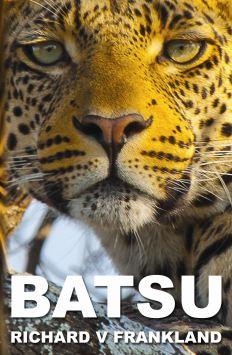 BATSU COVER